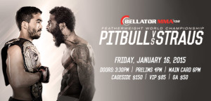 Bellator132_535x257