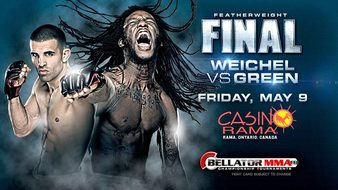 Bellator_119_The_Finals_Poster