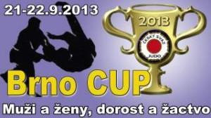Brno Cup 13