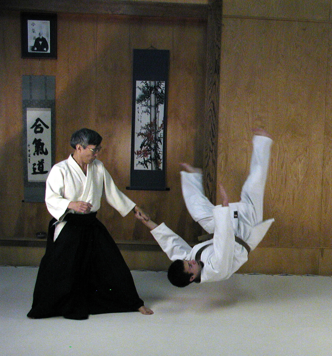 aikido-plr-articles